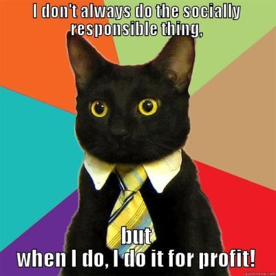 CSR Cat